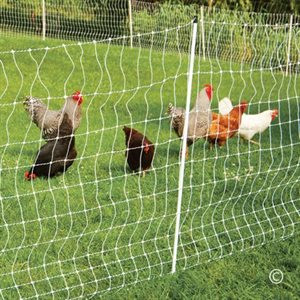ELECTRIC POULTRY NET - 12 / 48 / 3 50M